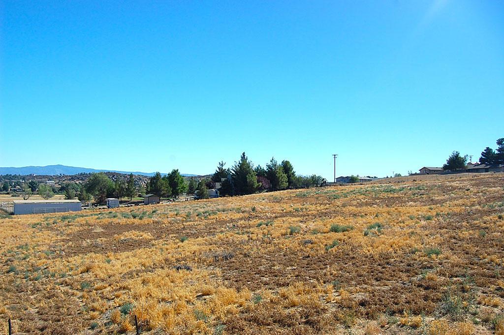 Over 2 Acres Near Lake Riverside - Image 4
