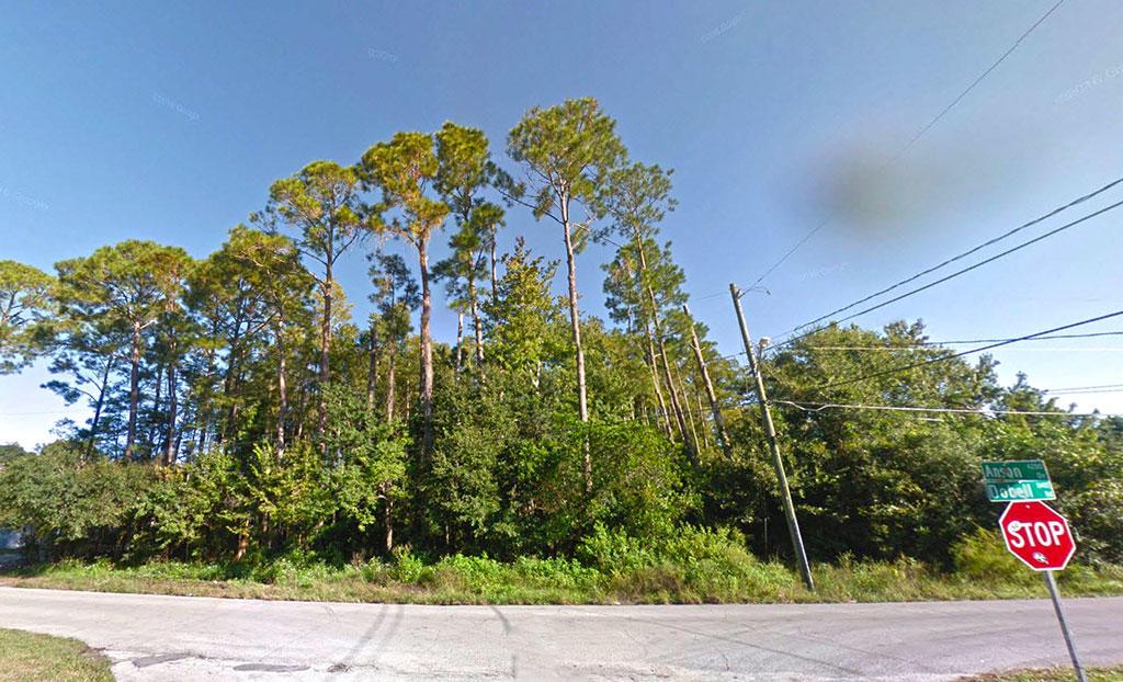 Large Acreage Land in Jacksonville - Image 2