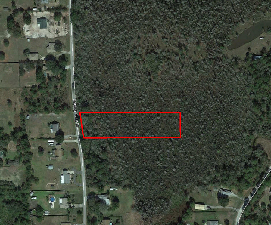 Two Acre Treed Escape Near Wesley Chapel - Image 1