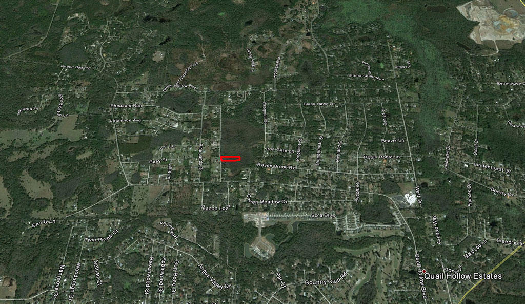 Two Acre Treed Escape Near Wesley Chapel - Image 2