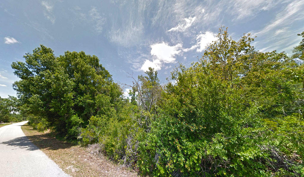 Two Acre Treed Escape Near Wesley Chapel - Image 3