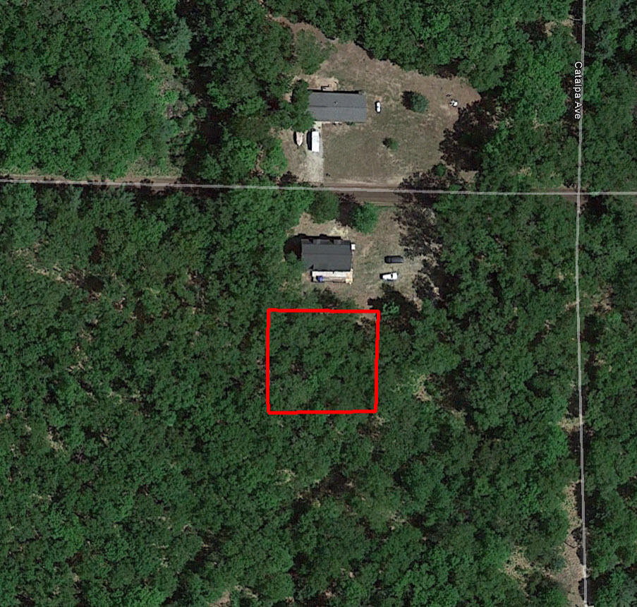 Wooded Parcel Close to Goose Egg Lake - Image 1