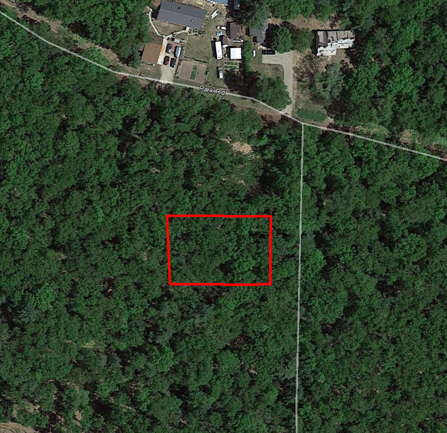 Heavily Treed Property Down the Road from Goose Egg Lake - Image 2