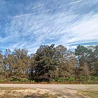 Florida Rural Acreage on Sixteenmile Creek - Image 1