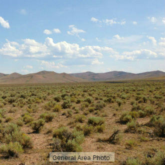 Large Nevada Acreage North of Reno - Image 1