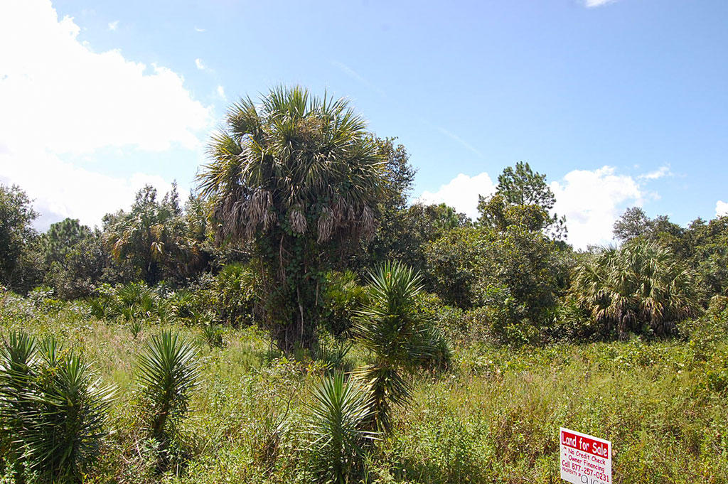 Over Half an Acre in Highlands Park Estate Neighborhood of Lake Placid - Image 3