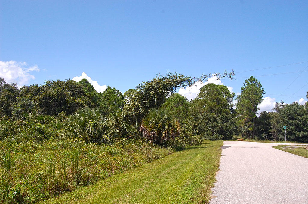 Over Half an Acre in Highlands Park Estate Neighborhood of Lake Placid - Image 4