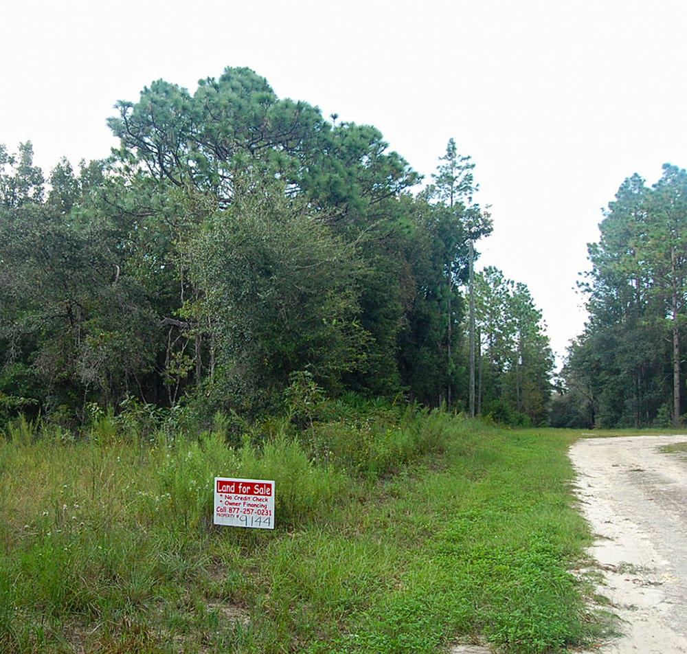 Large Lush Lot In Up and Coming Development - Image 3