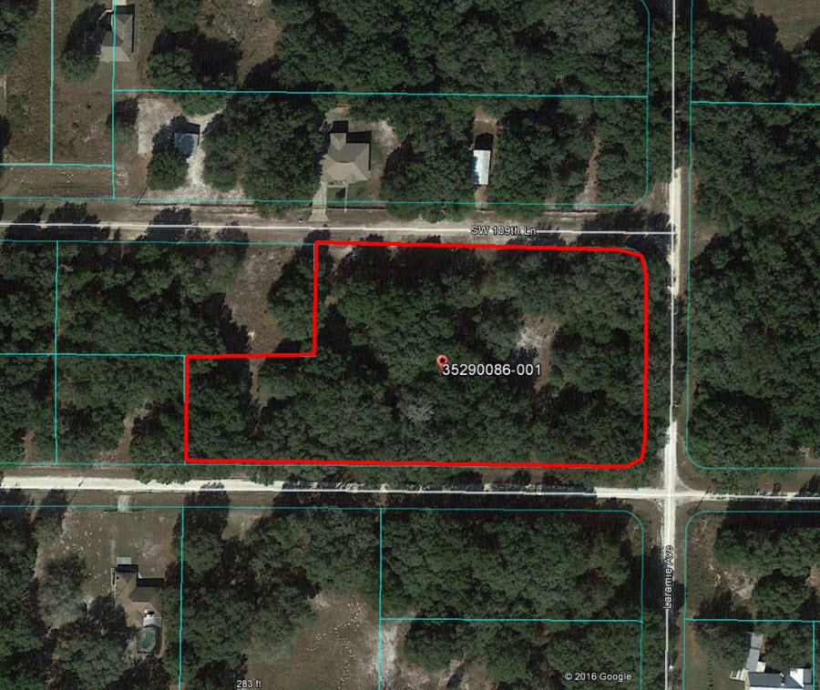 Central Florida Acreage an Hour from Gainesville - Image 1