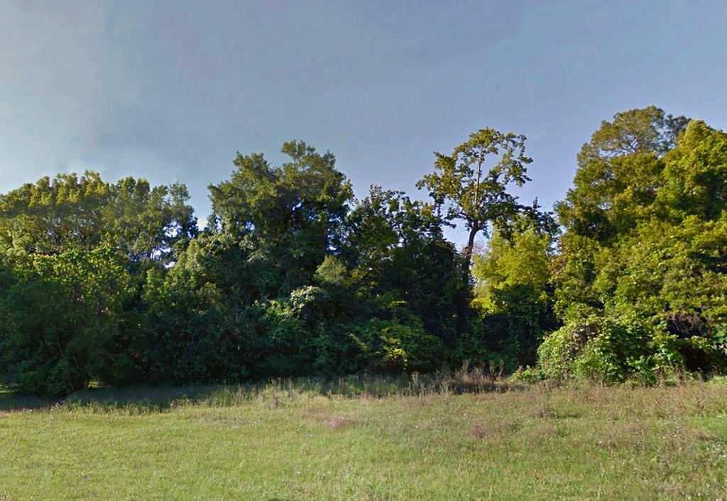 Residential Property Outside of Tallahassee - Image 3