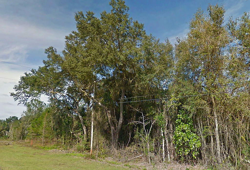 Two Acres in Community of Old Town Florida - Image 4