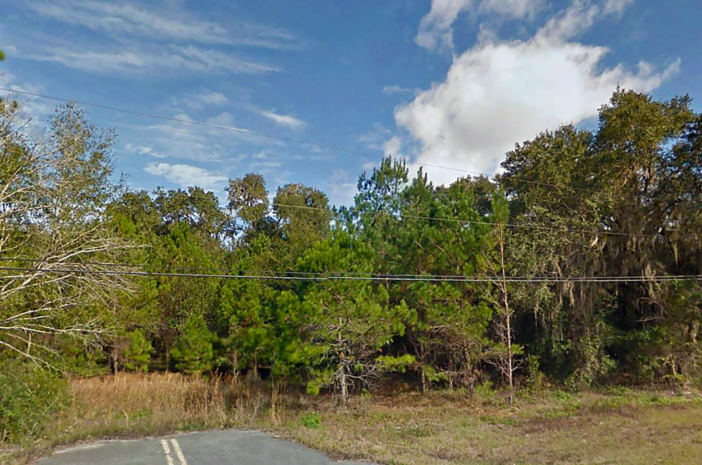 Two Acres in Community of Old Town Florida - Image 5