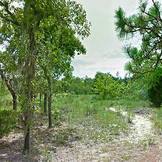 Large Residential Lot in Quiet Area Near Gulf Coast - Image 1