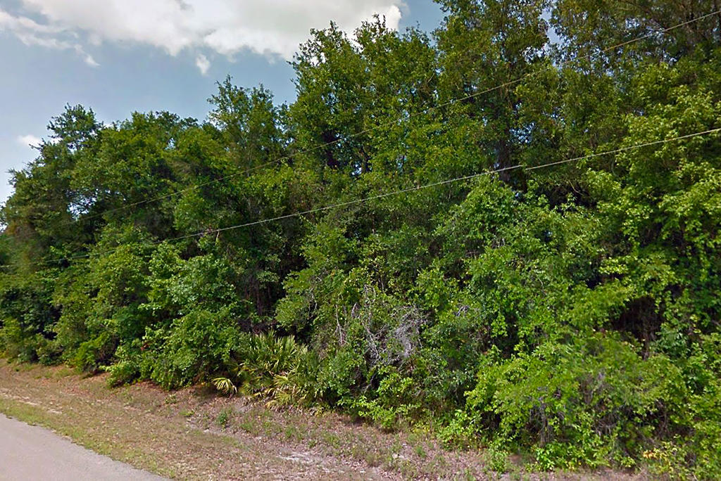Florida Acreage with Excellent Access - Image 2