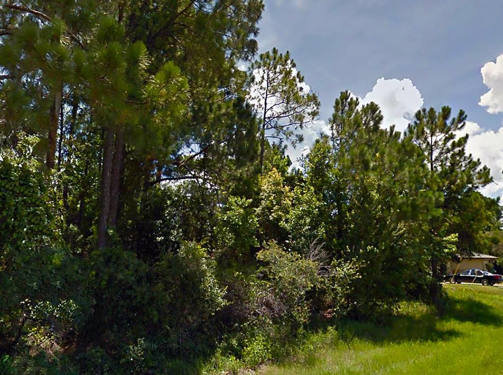 Superb Lot in Deltona Lakes Subdivision - Image 4