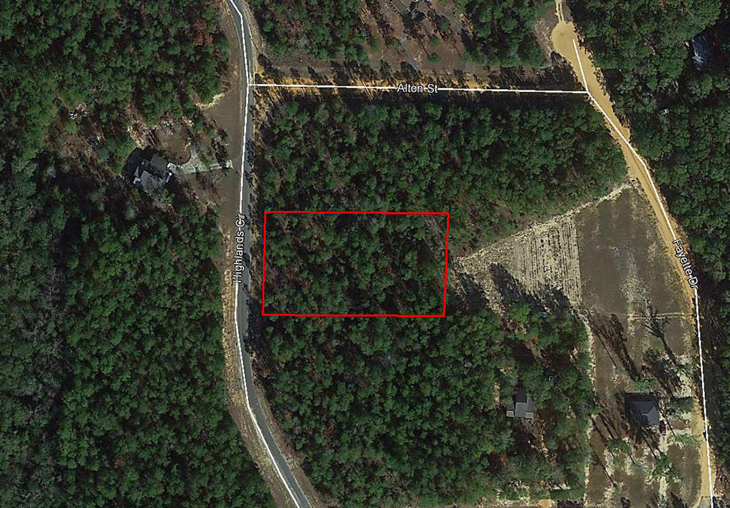 Treed Acreage Hideout in Northern Florida - Image 1