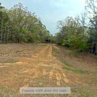 Beautiful Tree Covered Lake Property - Image 0