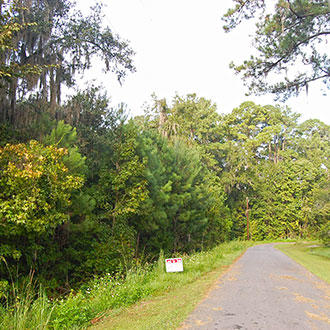 Gorgeous Lot in Nice Residential Neighborhood in Lake City - Image 0