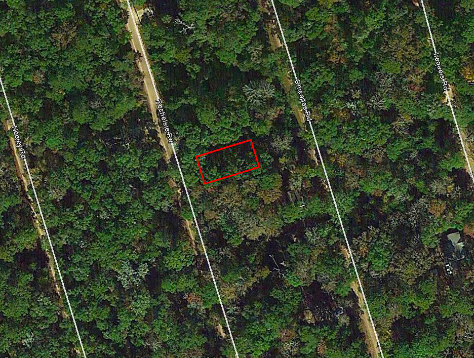Tree-Covered Property in Northern Florida - Image 1