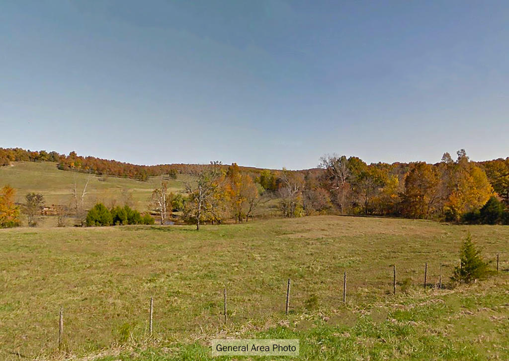 Land in the Ozarks, about 4 Miles from center of Horseshoe Bend - Image 5