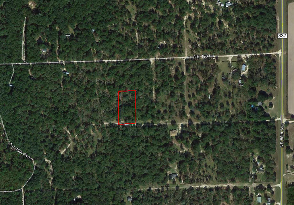 Emerald 1+ Acre Florida Wonderland west of Gainesville - Image 1