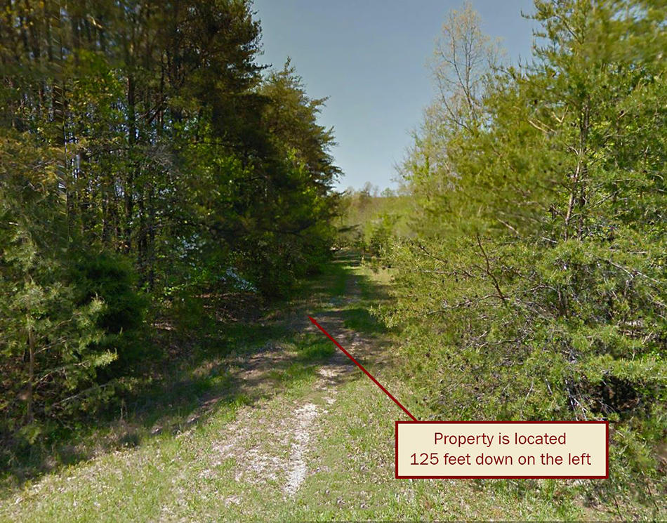 Beautiful Wooded Lot in Tennessee Resort Area - Image 3