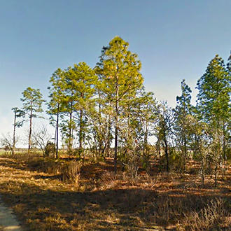 Corner Lot in Morriston Florida - Image 0