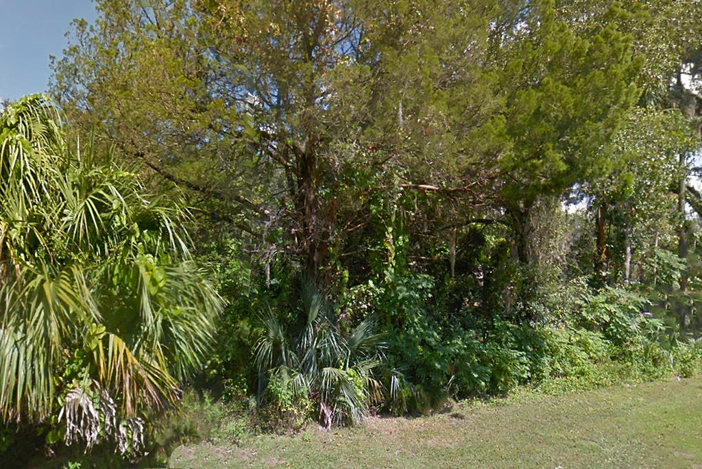 Gulf Coastal Property with Utility Hookups - Image 5