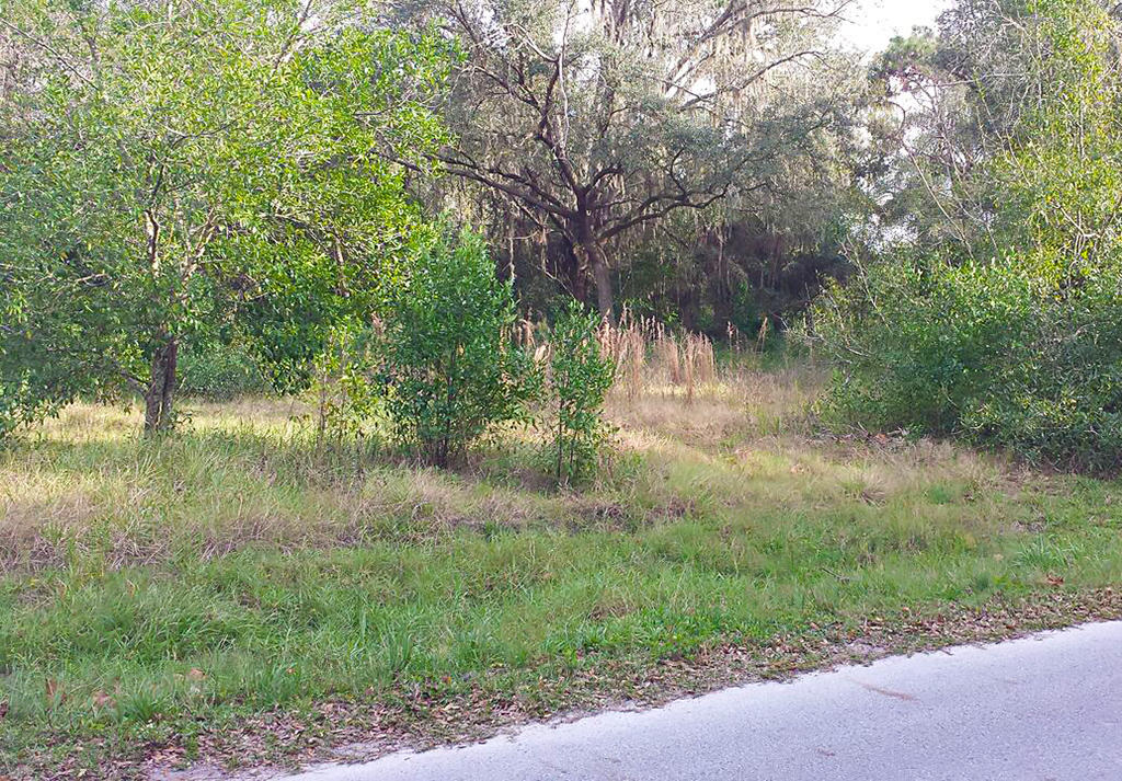 Lot on Jerome Drive in Moon Lake Estates - Image 2