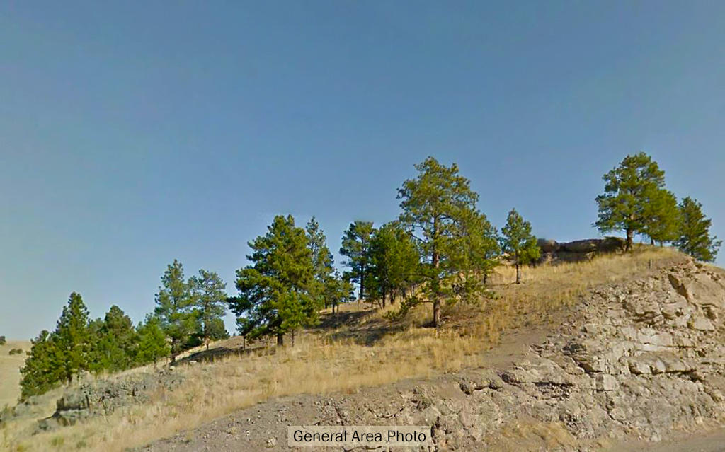 Nearly 6 Acres On The East Slope Of The Rockies - Image 5