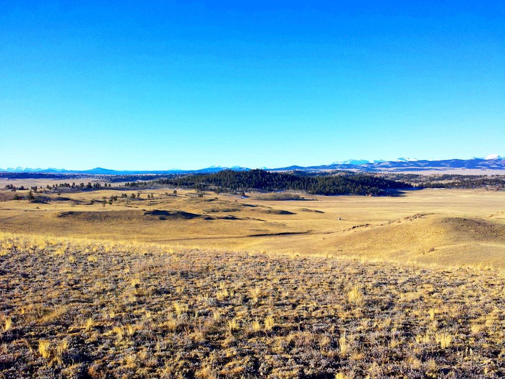 5 Acres Near Hartsel Colorado - Image 4