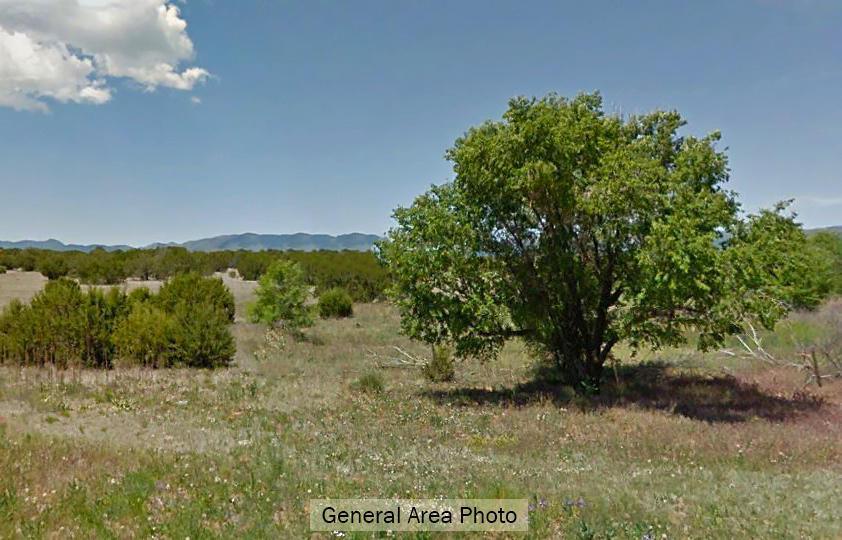 Rural Hideaway East of Belen, New Mexico - Image 4