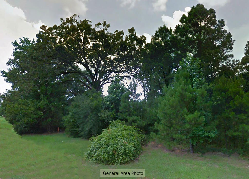 Property in Ringgold less than an Hour from Shreveport - Image 4