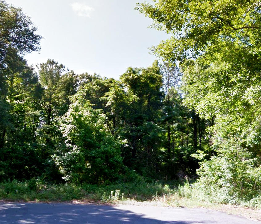 Great Homesite in Tallahassee Suburbs - Image 2