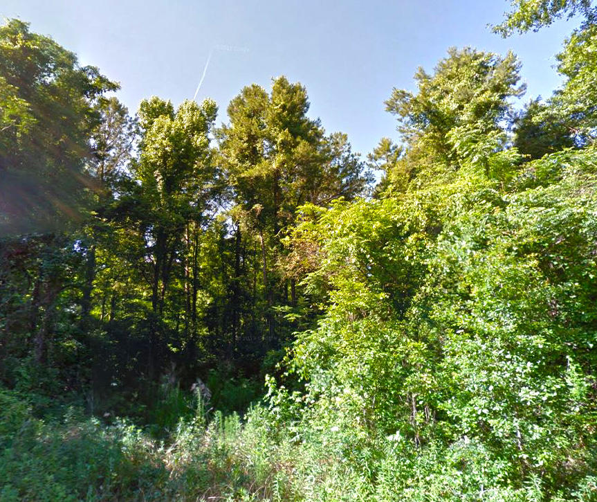 Great Homesite in Tallahassee Suburbs - Image 3