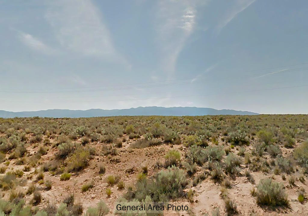 Almost an Acre of Open, Rural New Mexico Land - Image 4