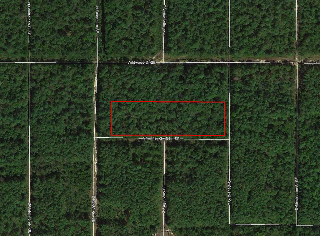 Tree Covered Acreage within 15 Miles of the Beach - Image 1