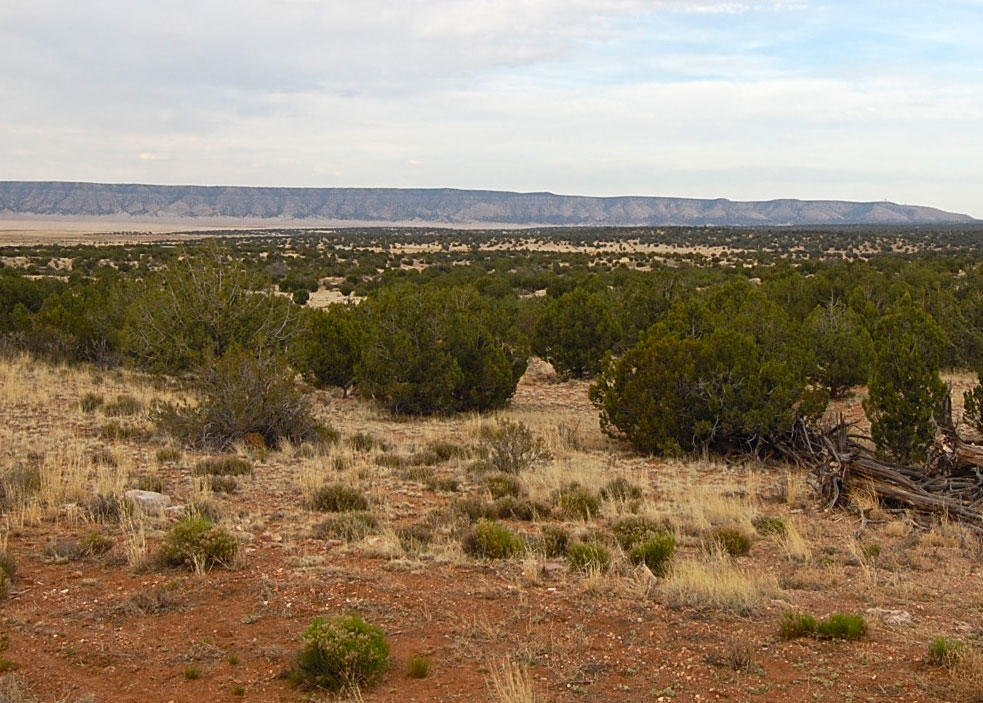 Over 1 Acre Hideaway with Open Skies and Mountain Views - Image 0