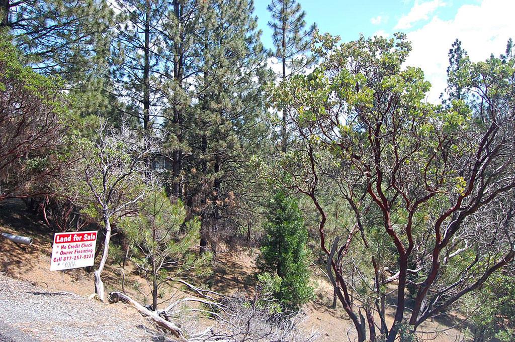 Hillside Residential Lot Near Pine Mountain Lake - Image 3