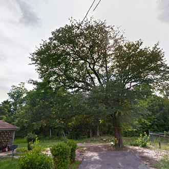 Large Residential Lot Close to Everything - Image 0
