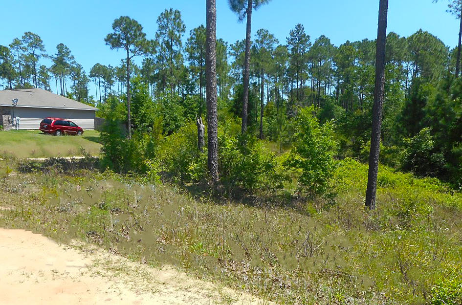 Crestview Property Within a Growing Community! - Image 4