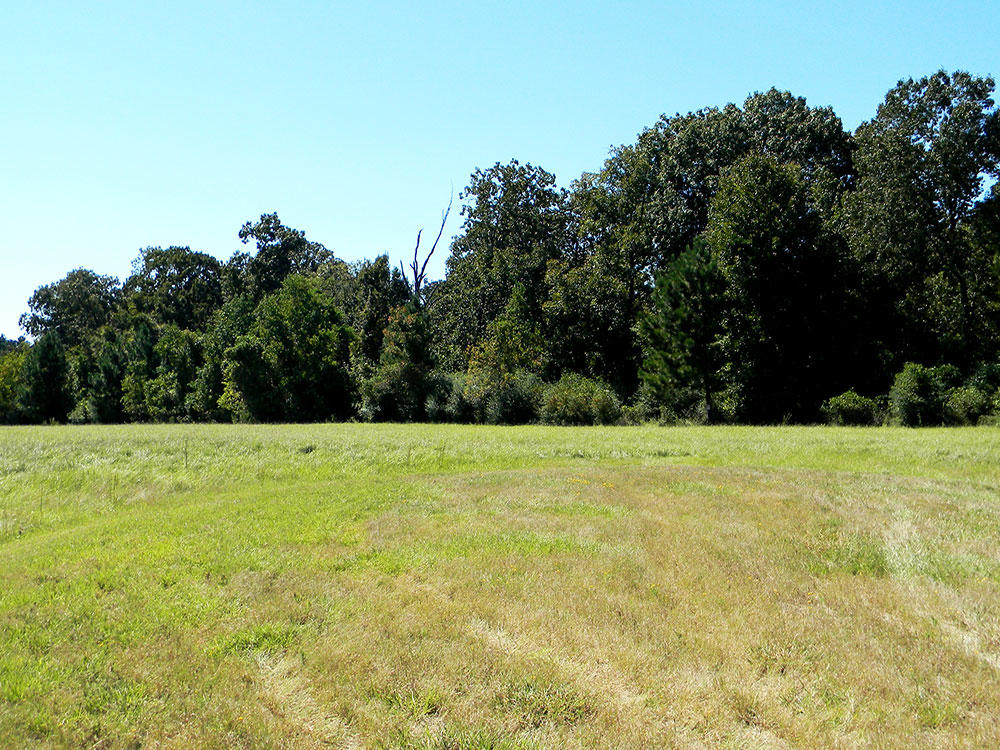 Over One Acre in Exclusive Texas Community - Image 2
