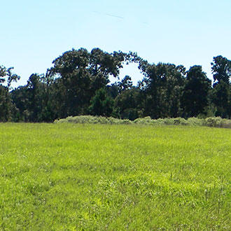 Over One Acre in Exclusive Texas Community - Image 4