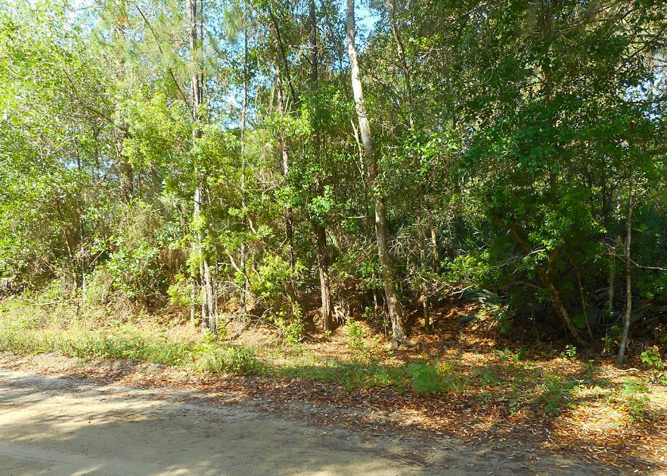 Residential Property in Palatka Close to the St Johns River - Image 5