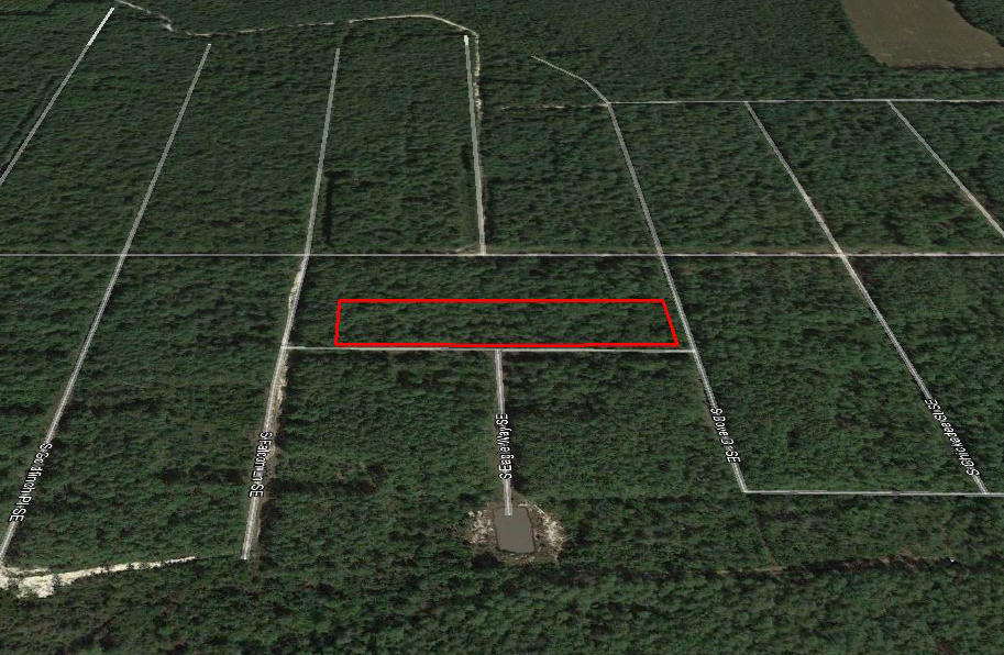 Tree Covered Acreage within 15 Miles of the Beach - Image 3