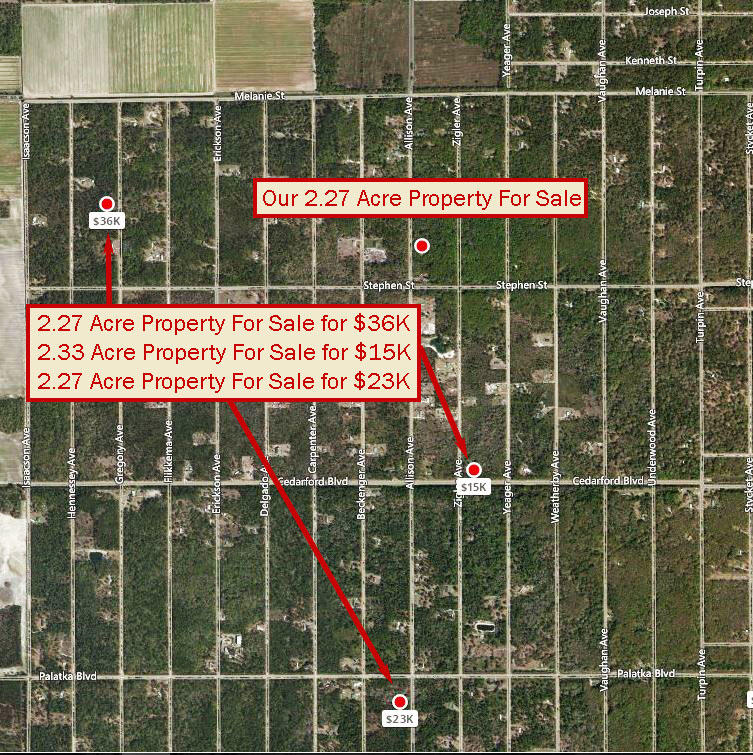 Florida Acreage with Excellent Access - Image 4
