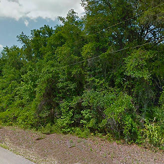 Florida Acreage with Excellent Access - Image 0