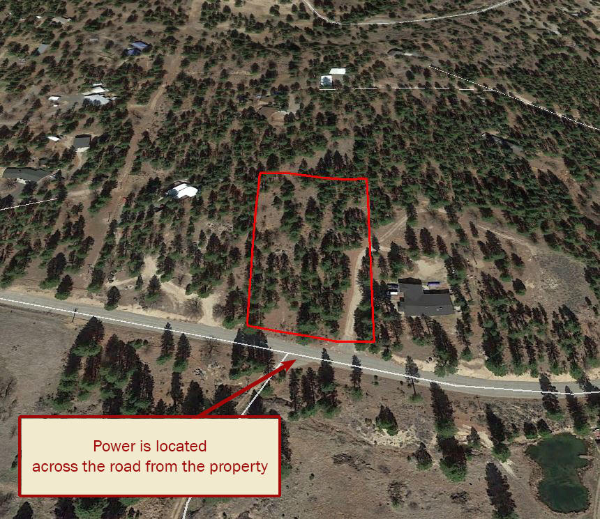 Gorgeous Acreage Among the Towering Pines - Image 3