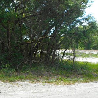 1+ Acre Mobile-Home-Friendly Homesite - Image 0
