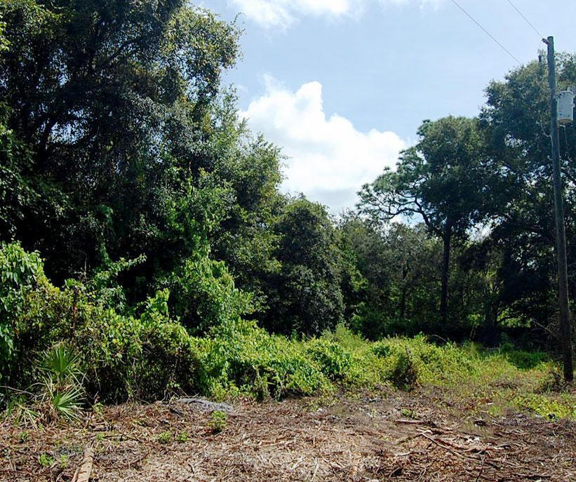 Nice Residential Lot in New Port Richey - Image 3